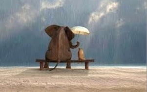 Kindly Elephant holding Umbrella