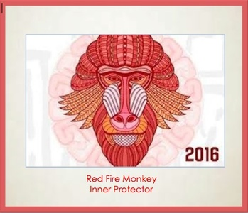 Red Fire Monkey